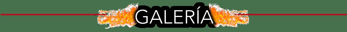 Escorts Travestis Mexico VIP masajistas videos chat en vivo
